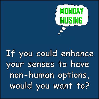 UN Monday Musing 7-23-18 CF